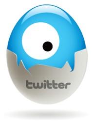Twitter Egg Eye