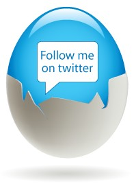 Twitter Follow Me Egg