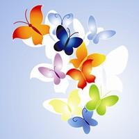 Butterflies 200