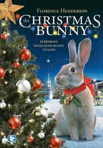 Christmas bunny 300