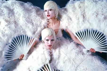 Twins Swans