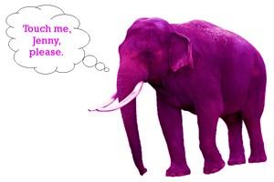Elephant jenny