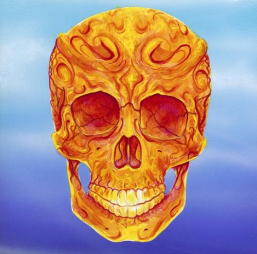 Orange Skull 700