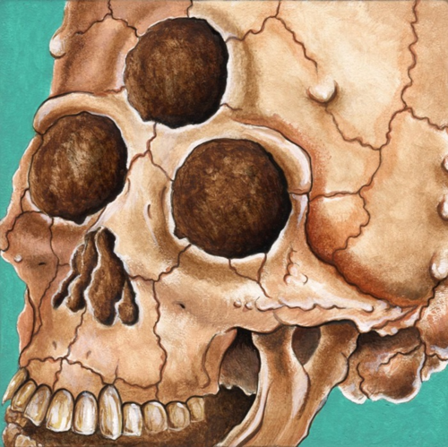 Alien Skull 700