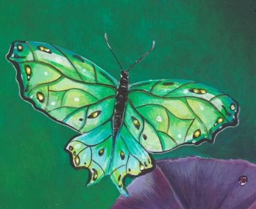 Butterfly 600