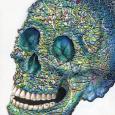 Stringilism Skull