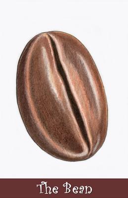 The Bean 400